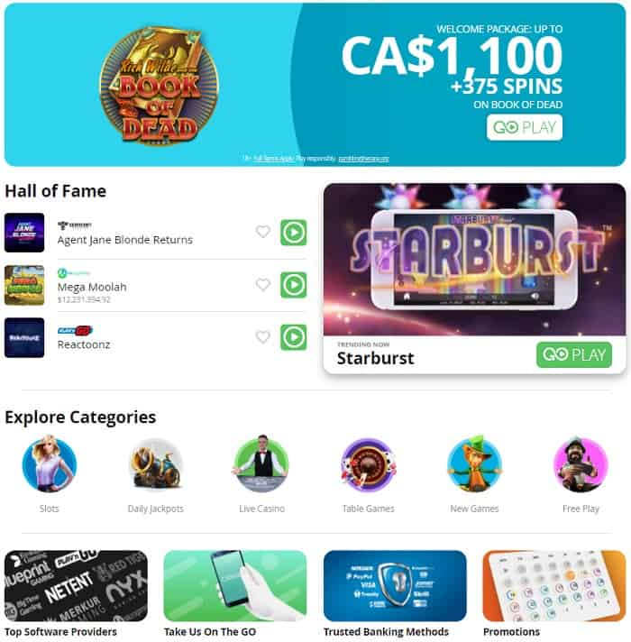Welcome Bonus and Free Rounds at Casi GO Casino